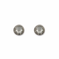 Earrings With Stickpins Grey